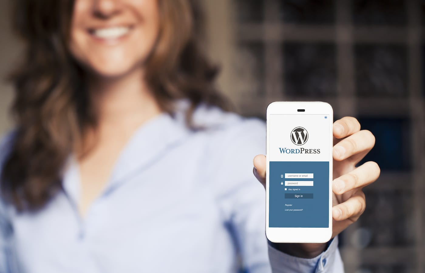 What Should You Look for in a Wordpress Theme